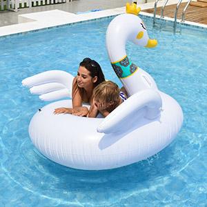 Animal Pool Float