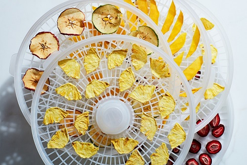 Dehydrate Fruit for Camping